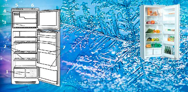 Внешний вид холодильника Beko NRF 5050Х