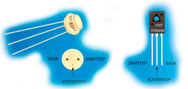 Цоколевка и внешний вид транзисторов КТ604
